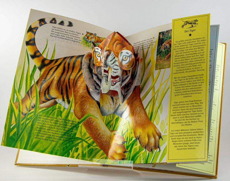Grossansicht in neuem Fenster: Tiger
